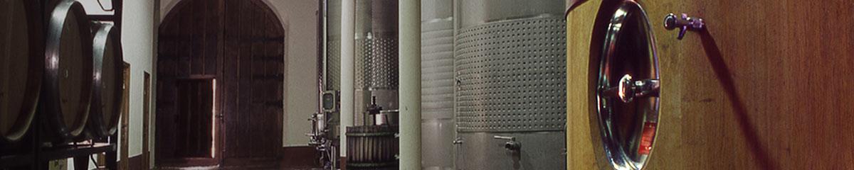 Elaboración de los vinos Kirios de Adrada