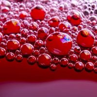 Proteínas, vitaminas y minerales del vino