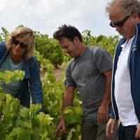 Formación en viticultura ecológica