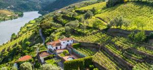 Vinho verde qu hay detr s del vino verde de portugal kirios de adrada - Que hay en portugal ...