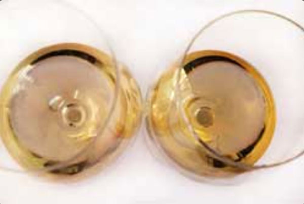 Cata visual del vino 2