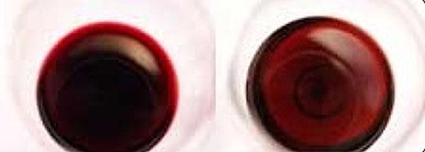 Cata visual del vino 4