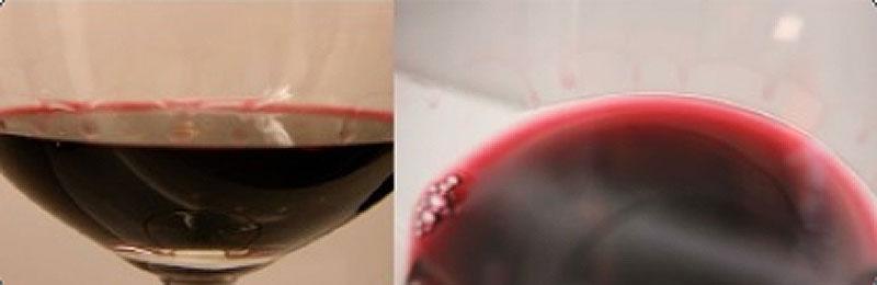 Cata visual del vino 7