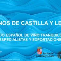 Mercado de los vino con D.O. de Castilla y León
